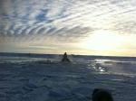 INUKJUAK, Canadá.- Imagen del Nunavik Marine Region Wildlife Board de las orcas atrapadas en el hielo en una bahía al noreste de Canadá. Corrientes cambiantes abrieron un camino a través del hielo en el mar permitiéndoles salir. Photo : Clément Rousseau