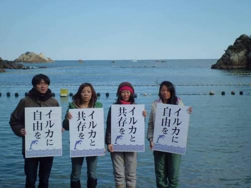 """""""Libertad para los delfines"""". Miembros de la ONG japonesa """"Flipper's Japan"""""""