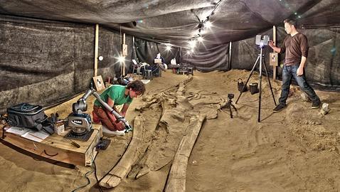 Paleontólogos usan un escáner láser de alta resolución para preservar digitalmente los fósiles en su contexto geológico original. SMITHSONIAN
