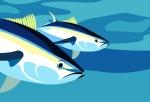 pesca-atun-Costa-Rica