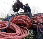 En esta foto del 27 de marzo del 2009, un langostero manipula las sogas de las redes.