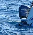 pesca-atun-ilegal-Algeciras