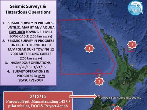 seismic-survey-map-NZ