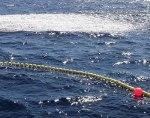 Pesquería de pequeños pelágicos. (Foto : AFMA)