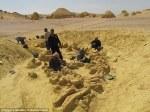 Los restos encontrados tienen 40 millones de años